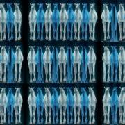 Camel-Team-Full-Size-3D-Blue-Glow-Animal-Video-Art-VJ-Loop VJ Loops Farm