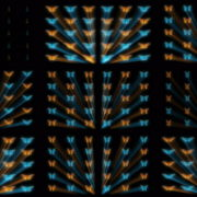 Butterflies-Dual-Color-Rays-insects-pattern-4K-Video-Art-VJ-Loop VJ Loops Farm