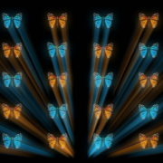 vj video background Butterflies-Dual-Color-Rays-insects-pattern-4K-Video-Art-VJ-Loop_003