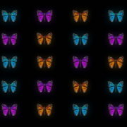 vj video background Butterflies-Tri-Color-insects-pattern-4K-Video-Art-VJ-Loop_003