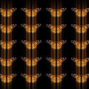 Butterflies-insects-pattern-4K-Video-Art-VJ-Loop_002 VJ Loops Farm