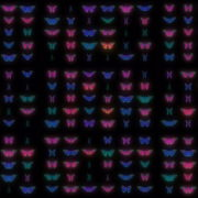 Color-Psychedelic-Butterfly-PSY-random-fly-insects-collection-light-pattern-4K-Video-Art-VJ-Loop VJ Loops Farm