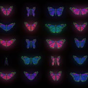 Color-Psychedelic-Butterfly-PSY-random-fly-insects-collection-light-pattern-4K-Video-Art-VJ-Loop_001 VJ Loops Farm