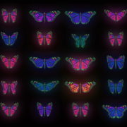 vj video background Color-Psychedelic-Butterfly-PSY-random-fly-insects-collection-light-pattern-4K-Video-Art-VJ-Loop_003