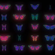 Color-Psychedelic-Butterfly-PSY-random-fly-insects-collection-light-pattern-4K-Video-Art-VJ-Loop_006 VJ Loops Farm