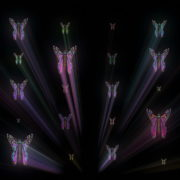 Colorful-Psychedelic-Butterfly-PSY-insects-collection-light-pattern-4K-Video-Art-VJ-Loop_006 VJ Loops Farm