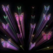 Colorful-Psychedelic-Butterfly-PSY-insects-collection-light-pattern-4K-Video-Art-VJ-Loop_008 VJ Loops Farm