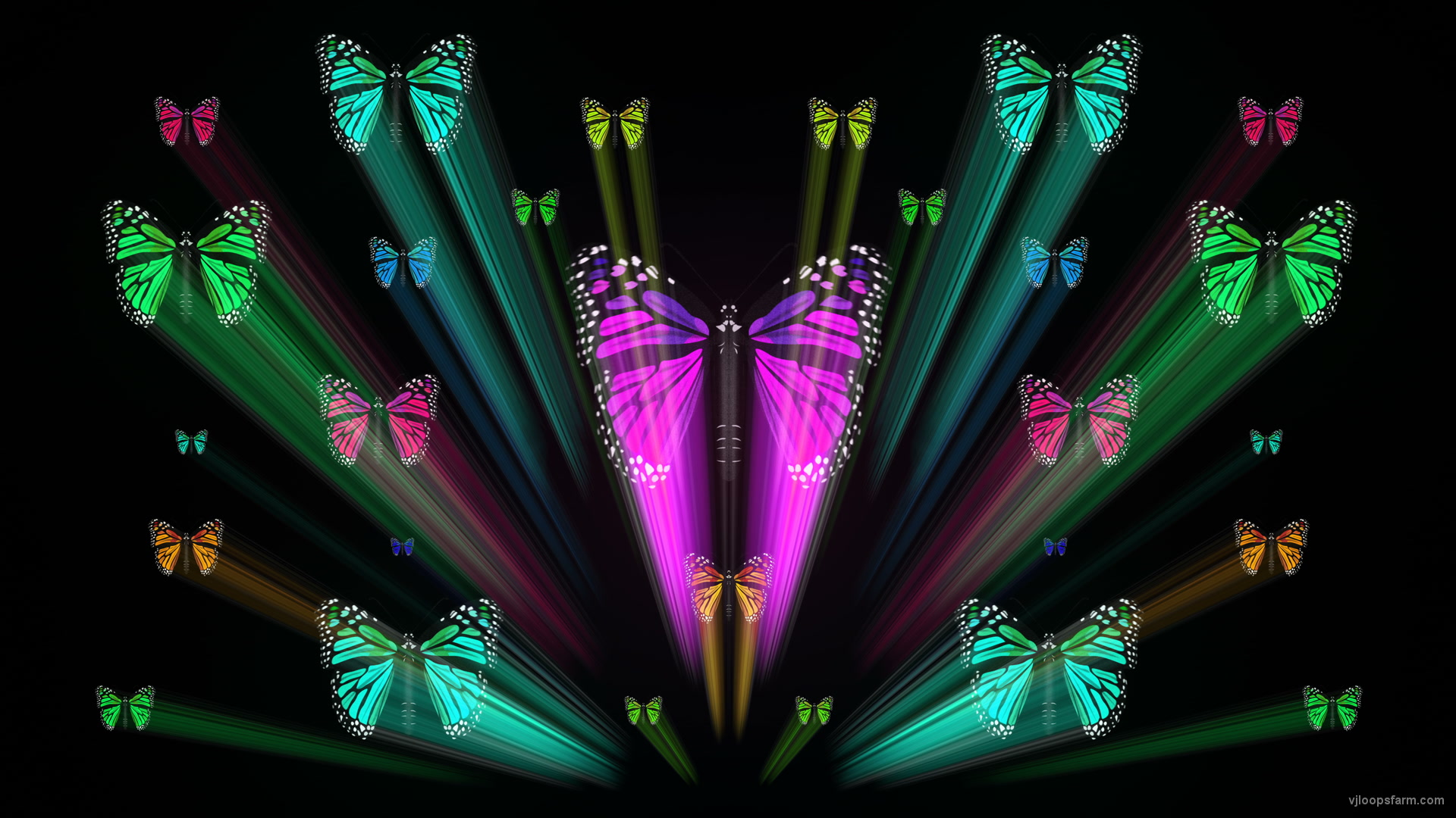vj video background Colorful-Rays-Center-Stage-glow-Butterflies-insects-pattern-4K-Video-Art-VJ-Loop_003