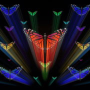Colorful-Rays-Center-Stage-glow-Butterflies-insects-pattern-4K-Video-Art-VJ-Loop_004 VJ Loops Farm