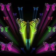 Colorful-Rays-Center-Stage-glow-Butterflies-insects-pattern-4K-Video-Art-VJ-Loop_005 VJ Loops Farm