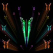 Colorful-Rays-Center-Stage-glow-Butterflies-insects-pattern-4K-Video-Art-VJ-Loop_006 VJ Loops Farm