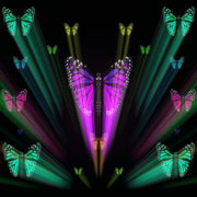 Colorful-Rays-Center-Stage-glow-Butterflies-insects-pattern-4K-Video-Art-VJ-Loop_008 VJ Loops Farm