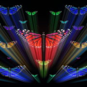 Colorful-Rays-Center-Stage-glow-Butterflies-insects-pattern-4K-Video-Art-VJ-Loop_009 VJ Loops Farm