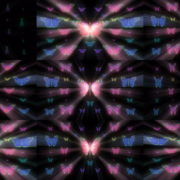 Colorful-Rays-Psychedelic-Center-Butterfly-PSY-insects-collection-light-pattern-4K-Video-Art-VJ-Loop VJ Loops Farm