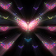 Colorful-Rays-Psychedelic-Center-Butterfly-PSY-insects-collection-light-pattern-4K-Video-Art-VJ-Loop_004 VJ Loops Farm
