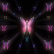 Colorful-Rays-Psychedelic-Center-Butterfly-PSY-insects-collection-light-pattern-4K-Video-Art-VJ-Loop_006 VJ Loops Farm
