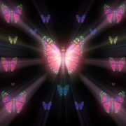 Colorful-Rays-Psychedelic-Center-Butterfly-PSY-insects-collection-light-pattern-4K-Video-Art-VJ-Loop_008 VJ Loops Farm