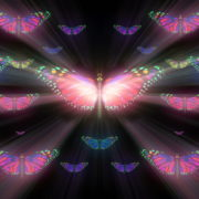 Colorful-Rays-Psychedelic-Center-Butterfly-PSY-insects-collection-light-pattern-4K-Video-Art-VJ-Loop_009 VJ Loops Farm
