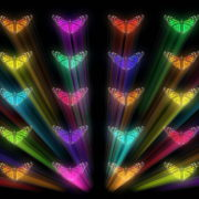 Colorful-Rays-glow-Butterflies-insects-pattern-4K-Video-Art-VJ-Loop_004 VJ Loops Farm