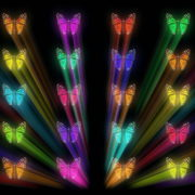 Colorful-Rays-glow-Butterflies-insects-pattern-4K-Video-Art-VJ-Loop_008 VJ Loops Farm
