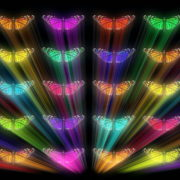 Colorful-Rays-glow-Butterflies-insects-pattern-4K-Video-Art-VJ-Loop_009 VJ Loops Farm