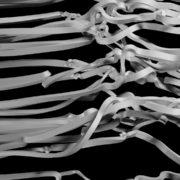 Fat-velvet-3D-Ribbon-curtain-Video-Mapping-Loop_009 VJ Loops Farm