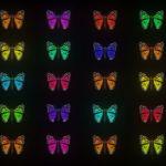 vj video background Glow-Pattern-Light-Fly-Butterflies-Collection-Video-Art-Motion-Background-4K-VJ-Loop_003