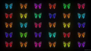 vj video background Glow-Pattern-Light-Fly-Butterflies-Collection-Video-Art-Motion-Background-4K-VJ-Loop_003
