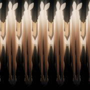 Jumping-Rabbit-Playboy-Girl-Parad-4K-Video-Art-VJ-Loop_001 VJ Loops Farm