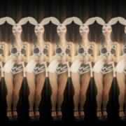 Jumping-Rabbit-Playboy-Girl-Parad-4K-Video-Art-VJ-Loop_002 VJ Loops Farm