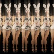 Jumping-Rabbit-Playboy-Girl-Parad-4K-Video-Art-VJ-Loop_007 VJ Loops Farm