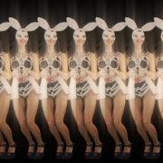 Jumping-Rabbit-Playboy-Girl-Parad-4K-Video-Art-VJ-Loop_009 VJ Loops Farm