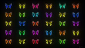 vj video background Random-Color-Light-Fly-Butterfly-Collection-Video-Art-Motion-Background-4K-VJ-Loop_003