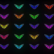 Random-Color-Light-Fly-Butterfly-Collection-Video-Art-Motion-Background-4K-VJ-Loop_004 VJ Loops Farm