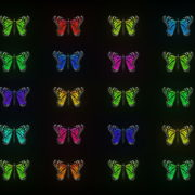 Random-Color-Light-Fly-Butterfly-Collection-Video-Art-Motion-Background-4K-VJ-Loop_005 VJ Loops Farm