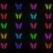 Random-Color-Light-Fly-Butterfly-Collection-Video-Art-Motion-Background-4K-VJ-Loop_008 VJ Loops Farm