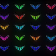 Random-fast-Color-change-Butterfly-Collection-Video-Art-Motion-Background-4K-VJ-Loop_004 VJ Loops Farm
