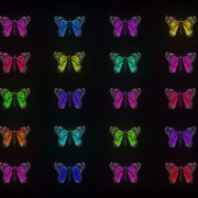 Random-fast-Color-change-Butterfly-Collection-Video-Art-Motion-Background-4K-VJ-Loop_005 VJ Loops Farm