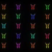 Random-fast-Color-change-Butterfly-Collection-Video-Art-Motion-Background-4K-VJ-Loop_006 VJ Loops Farm
