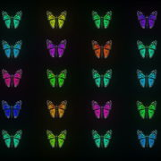 Random-fast-Color-change-Butterfly-Collection-Video-Art-Motion-Background-4K-VJ-Loop_008 VJ Loops Farm
