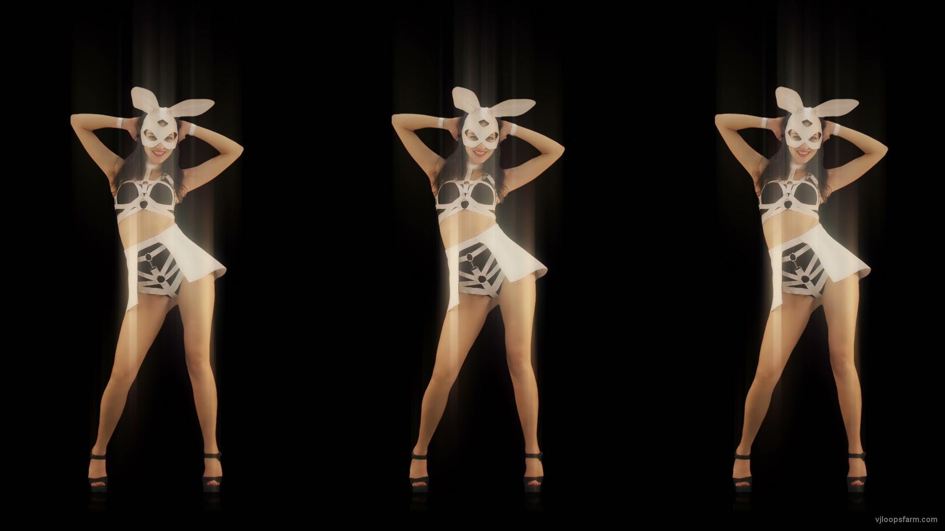 vj video background Trio-Dance-Shake-Twerk-Bunny-Rabbit-Girl-Video-Art-4K-Vj-Loop_003