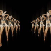 Tunnel-Playboy-Girls-Rabbit-4K-Video-Art-VJ-Loop_002 VJ Loops Farm