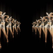 Tunnel-Playboy-Girls-Rabbit-4K-Video-Art-VJ-Loop_005 VJ Loops Farm