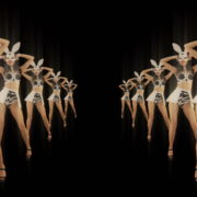 Tunnel-Playboy-Girls-Rabbit-4K-Video-Art-VJ-Loop_006 VJ Loops Farm