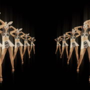 Tunnel-Playboy-Girls-Rabbit-4K-Video-Art-VJ-Loop_007 VJ Loops Farm