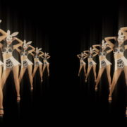 Tunnel-Playboy-Girls-Rabbit-4K-Video-Art-VJ-Loop_008 VJ Loops Farm
