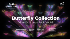 Butterfly_effect_Vj_Loop_video wallpaper