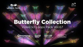 Butterly-video-art-motion-background