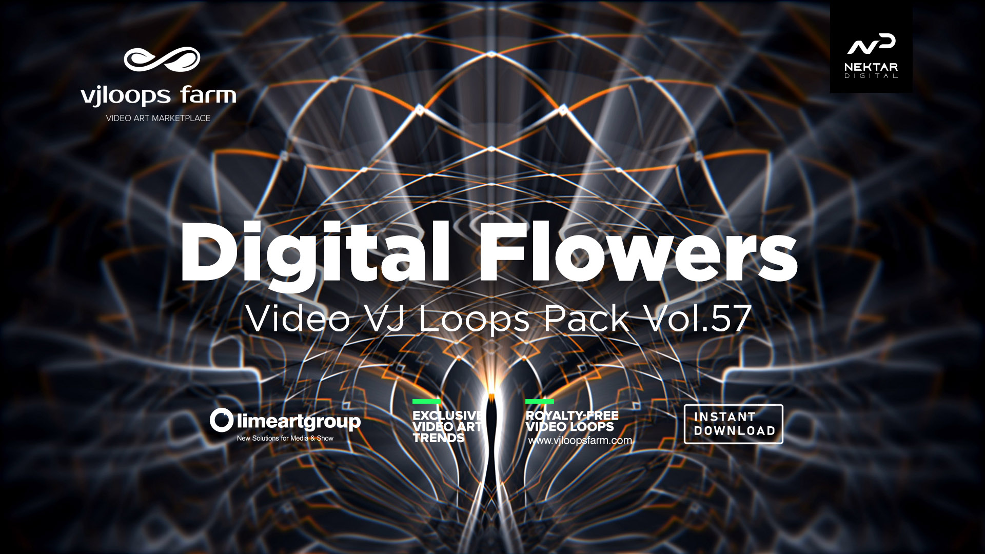 digital flower live video loop wallpaper