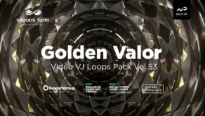GoldenValor53